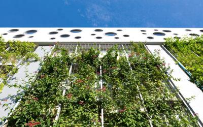 Projeto arquitetônico sustentável, descubra as vantagens!