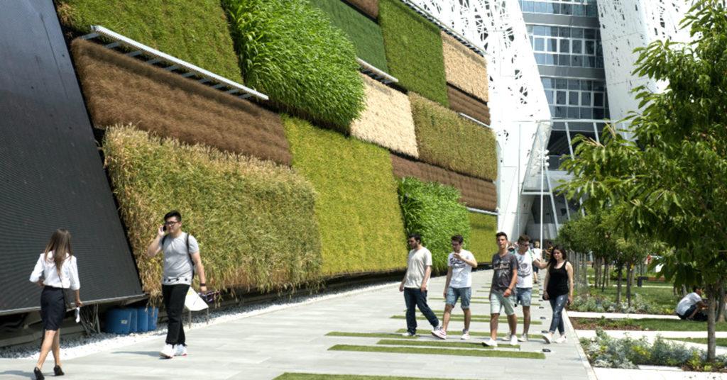 Vantagens de projetos verdes